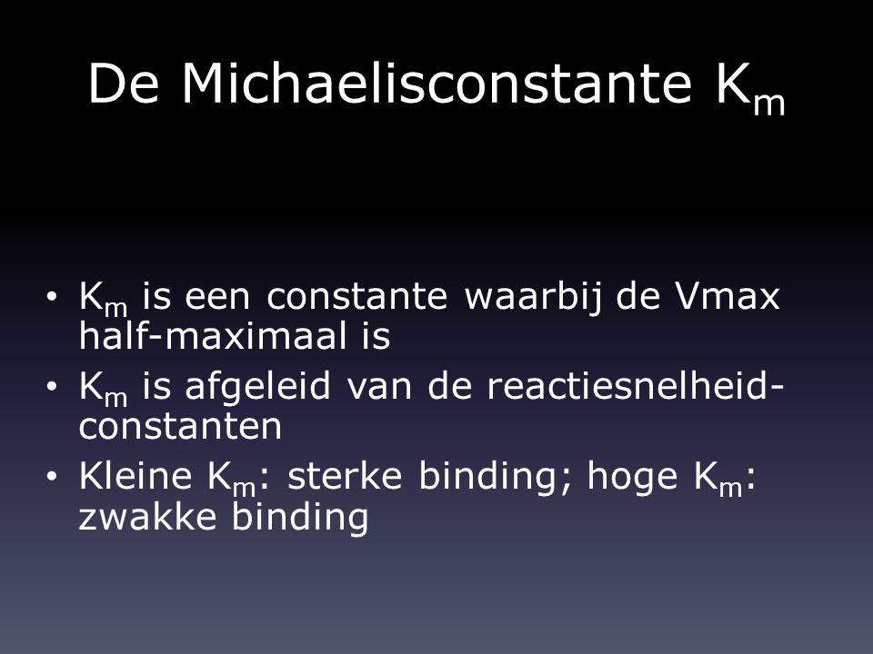 De Michaelisconstante Km