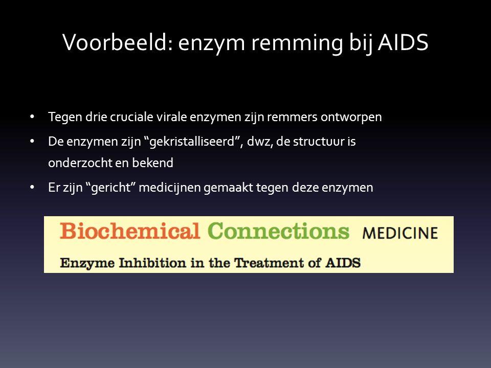 Voorbeeld: enzym remming bij AIDS