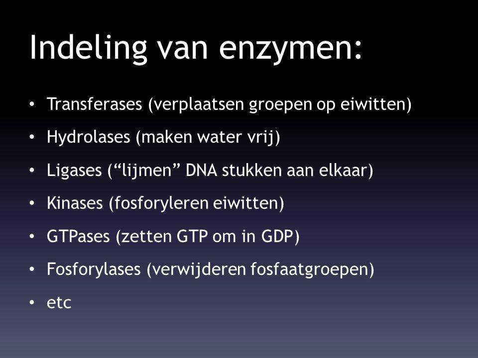 Indeling van enzymen: Transferases (verplaatsen groepen op eiwitten)