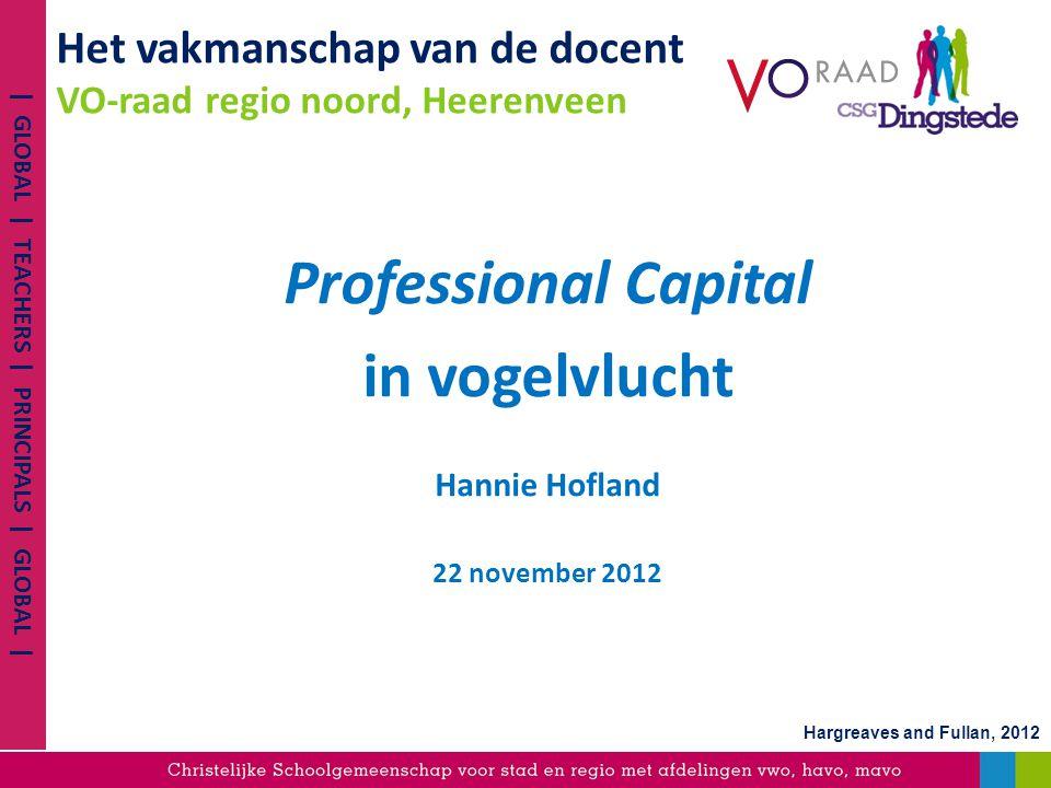 Het vakmanschap van de docent VO-raad regio noord, Heerenveen