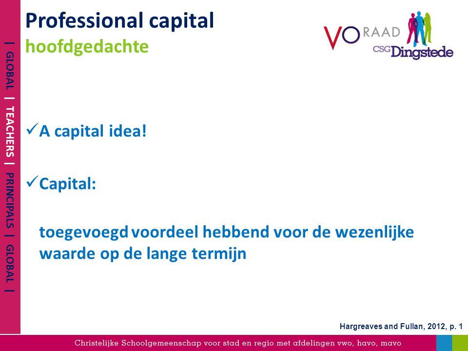 Professional capital hoofdgedachte
