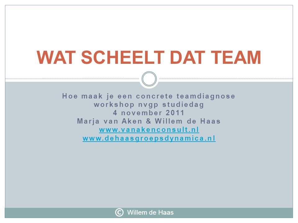 WAT SCHEELT DAT TEAM © Hoe maak je een concrete teamdiagnose