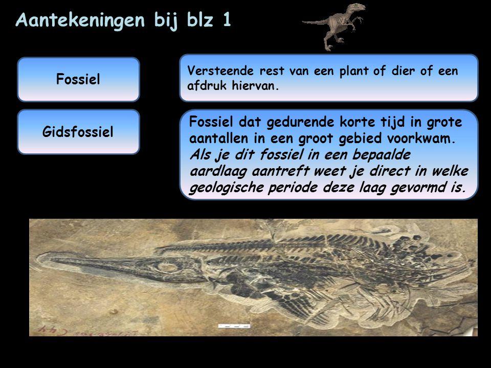Aantekeningen bij blz 1 Fossiel