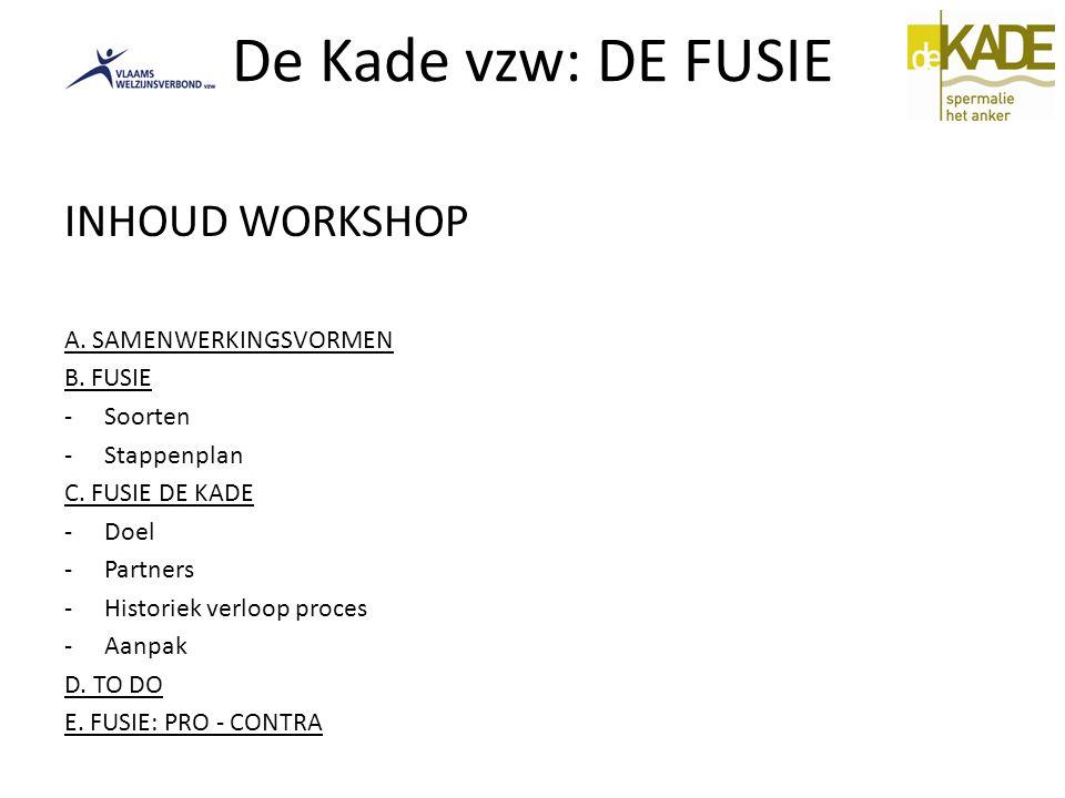 De Kade vzw: DE FUSIE INHOUD WORKSHOP A. SAMENWERKINGSVORMEN B. FUSIE