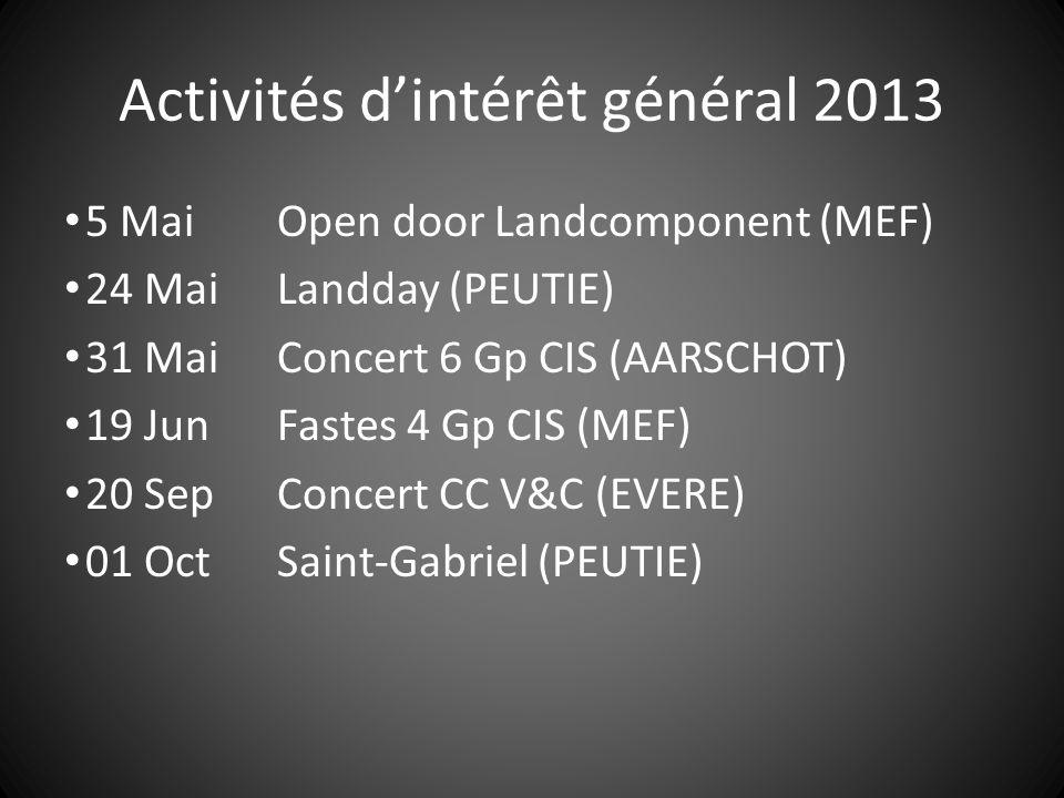 Activités d'intérêt général 2013