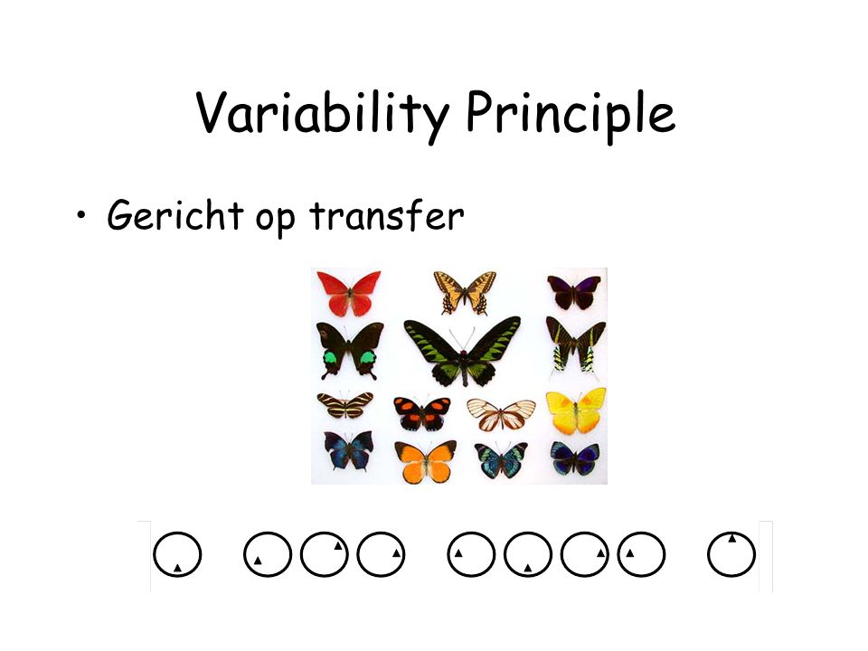 Variability Principle