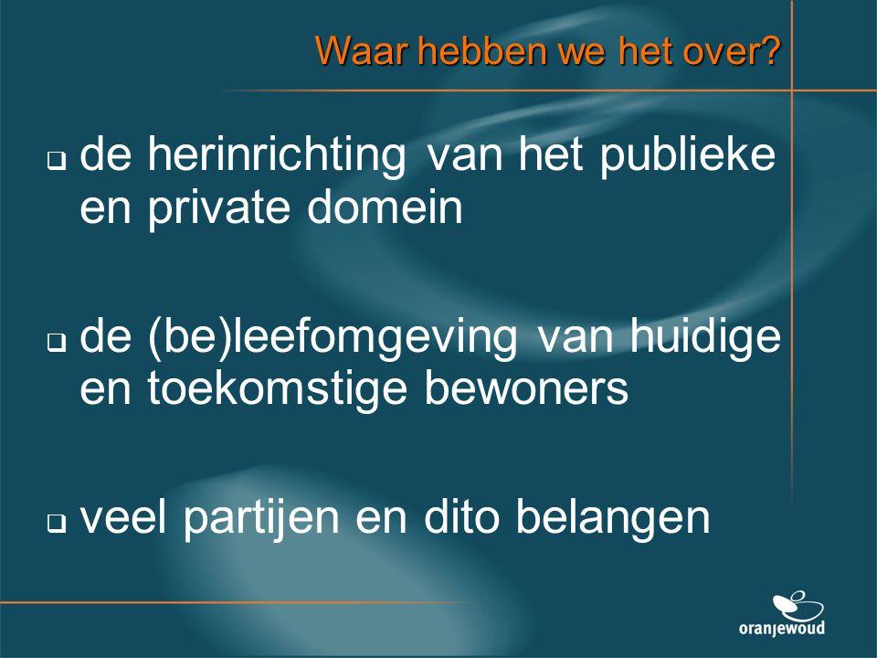 de herinrichting van het publieke en private domein