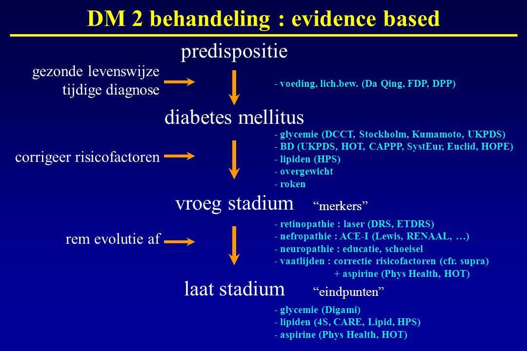 DM 2 behandeling : evidence based