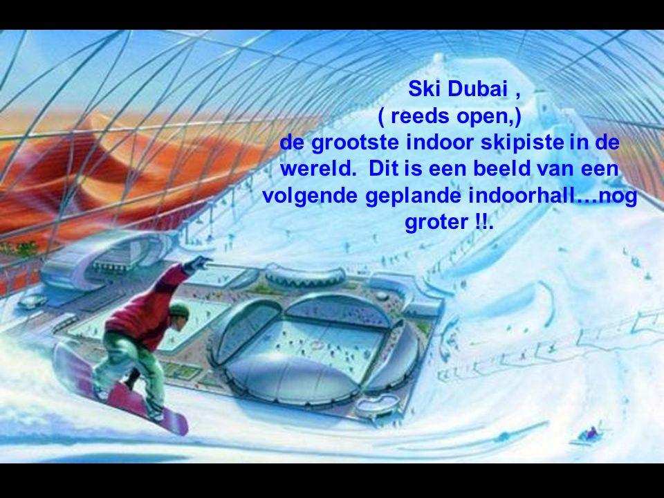 Ski Dubai , ( reeds open,) de grootste indoor skipiste in de wereld