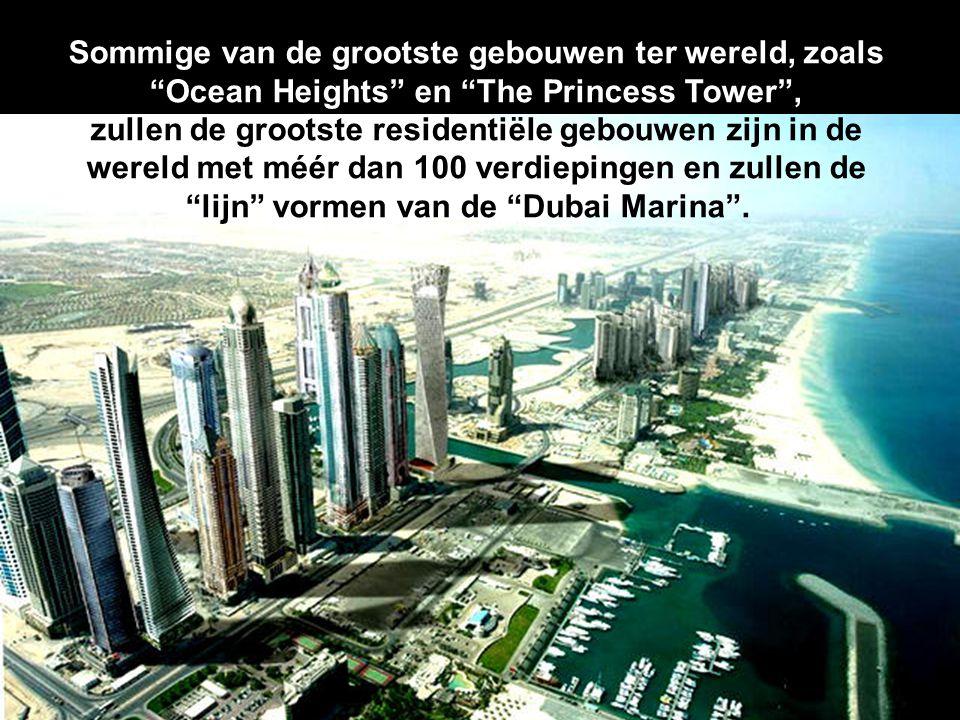 Sommige van de grootste gebouwen ter wereld, zoals Ocean Heights en The Princess Tower , zullen de grootste residentiële gebouwen zijn in de wereld met méér dan 100 verdiepingen en zullen de lijn vormen van de Dubai Marina .