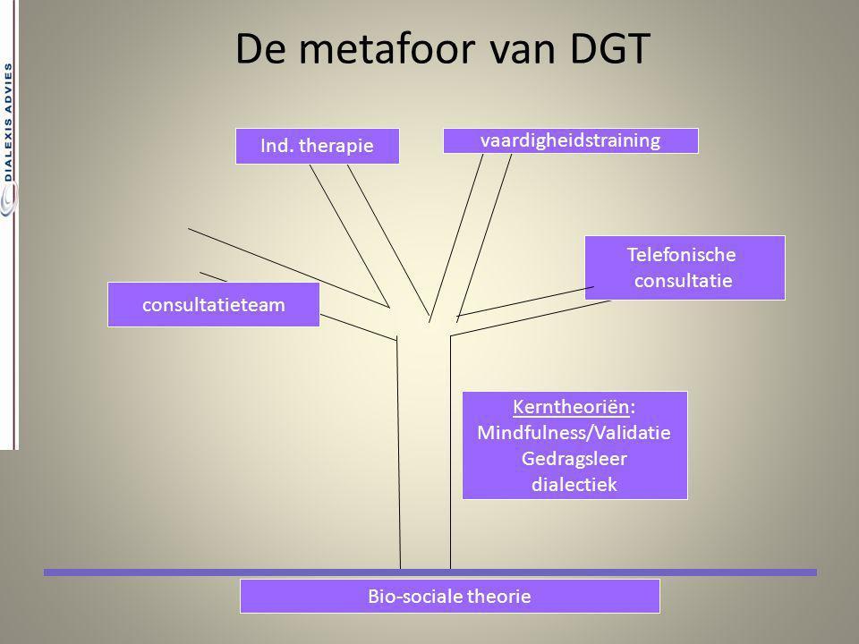 De metafoor van DGT Ind. therapie vaardigheidstraining Telefonische
