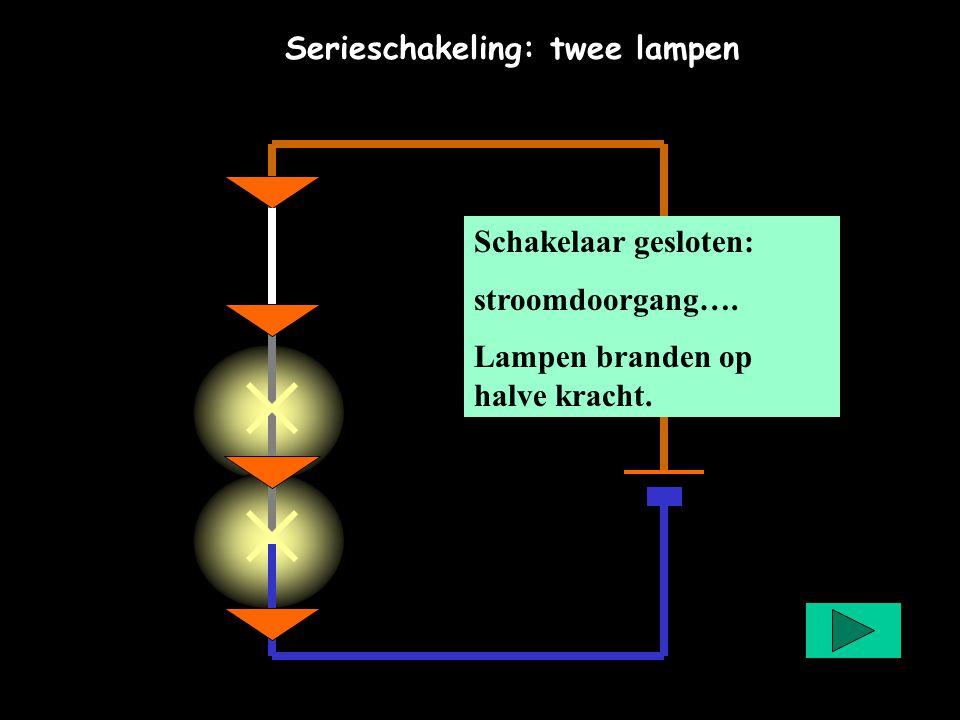 Serieschakeling: twee lampen