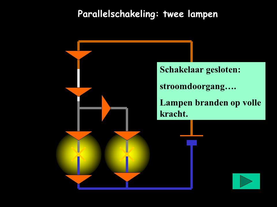 Parallelschakeling: twee lampen