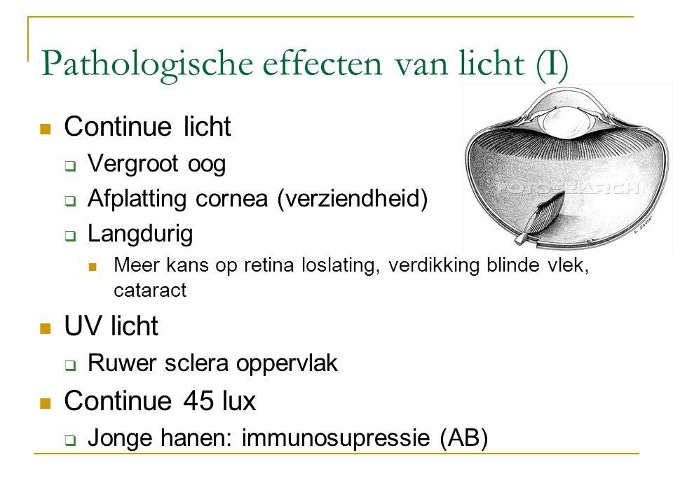 Pathologische effecten van licht (I)