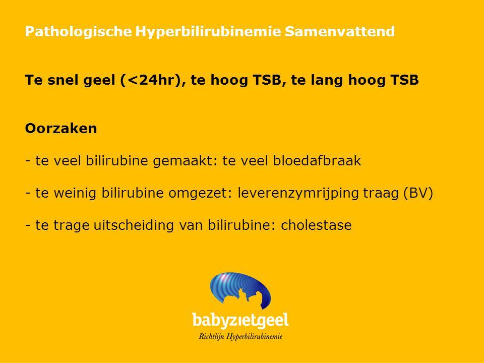 Pathologische Hyperbilirubinemie Samenvattend