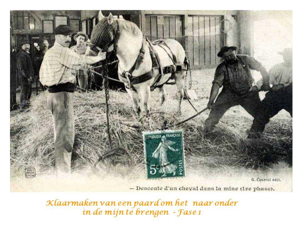 Klaarmaken van een paard om het naar onder in de mijn te brengen - Fase 1