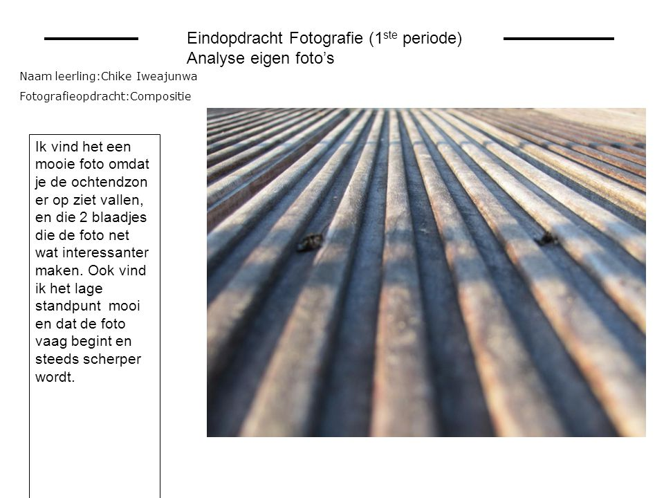 Eindopdracht Fotografie (1ste periode) Analyse eigen foto's