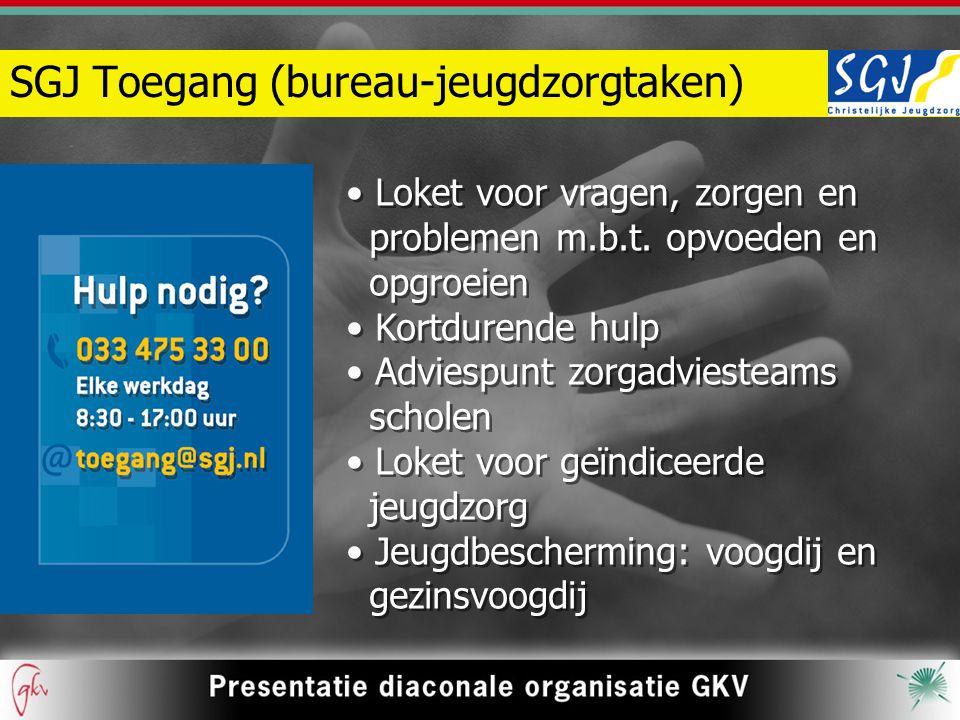 SGJ Toegang (bureau-jeugdzorgtaken)