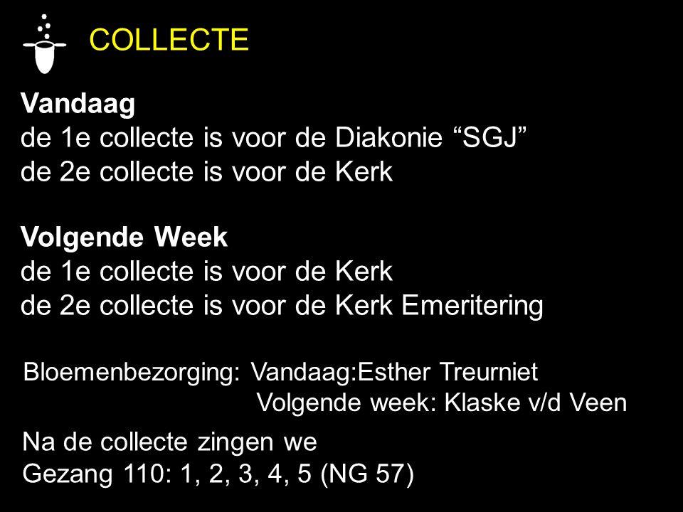 COLLECTE Vandaag de 1e collecte is voor de Diakonie SGJ