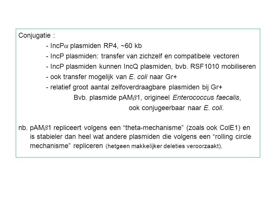 Conjugatie : - IncPa plasmiden RP4, ~60 kb. - IncP plasmiden: transfer van zichzelf en compatibele vectoren.