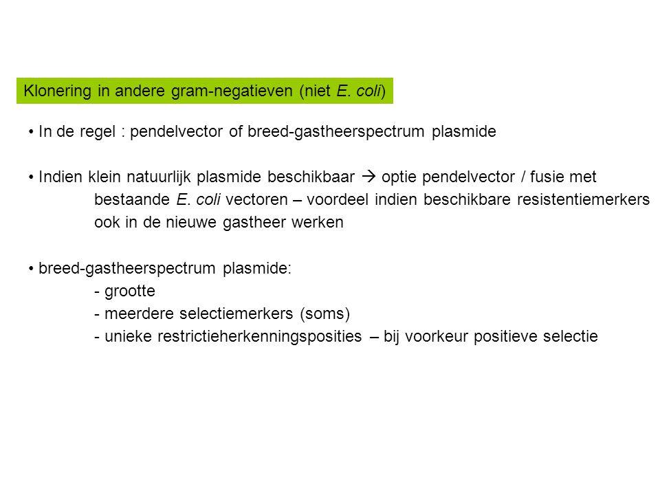 Klonering in andere gram-negatieven (niet E. coli)