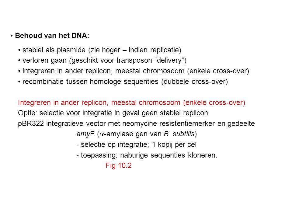 Behoud van het DNA: stabiel als plasmide (zie hoger – indien replicatie) verloren gaan (geschikt voor transposon delivery )