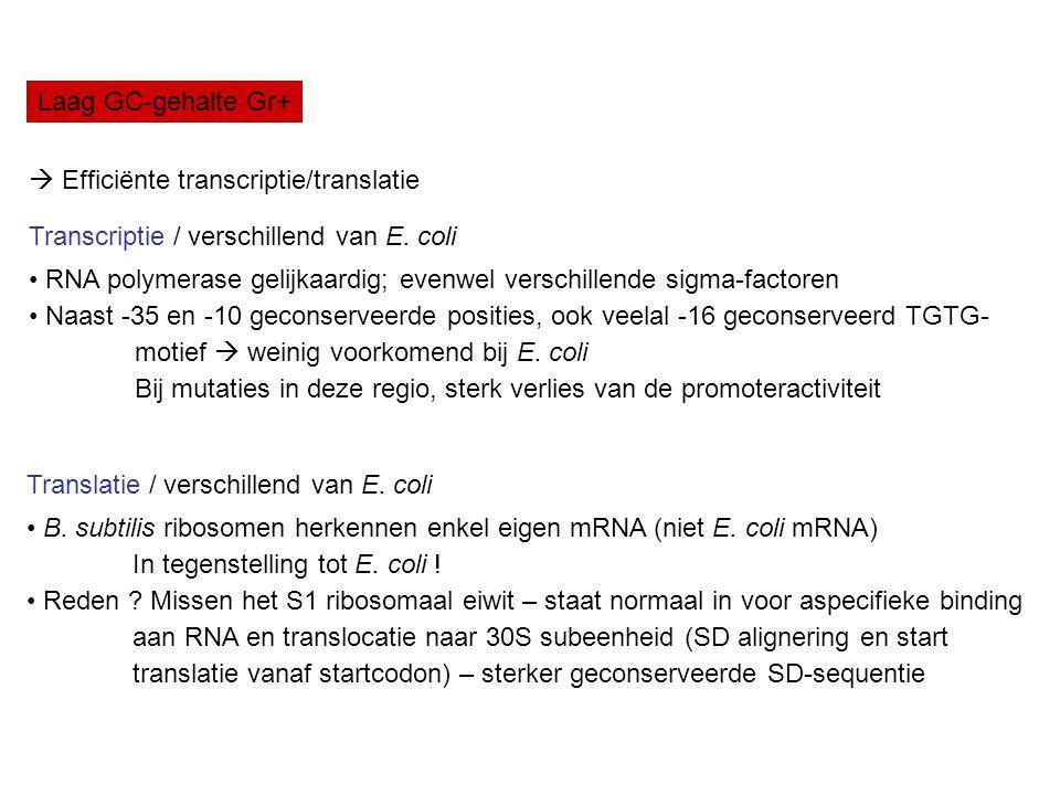Laag GC-gehalte Gr+  Efficiënte transcriptie/translatie. Transcriptie / verschillend van E. coli.