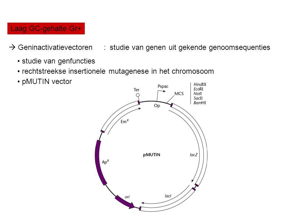 Laag GC-gehalte Gr+  Geninactivatievectoren : studie van genen uit gekende genoomsequenties. studie van genfuncties.