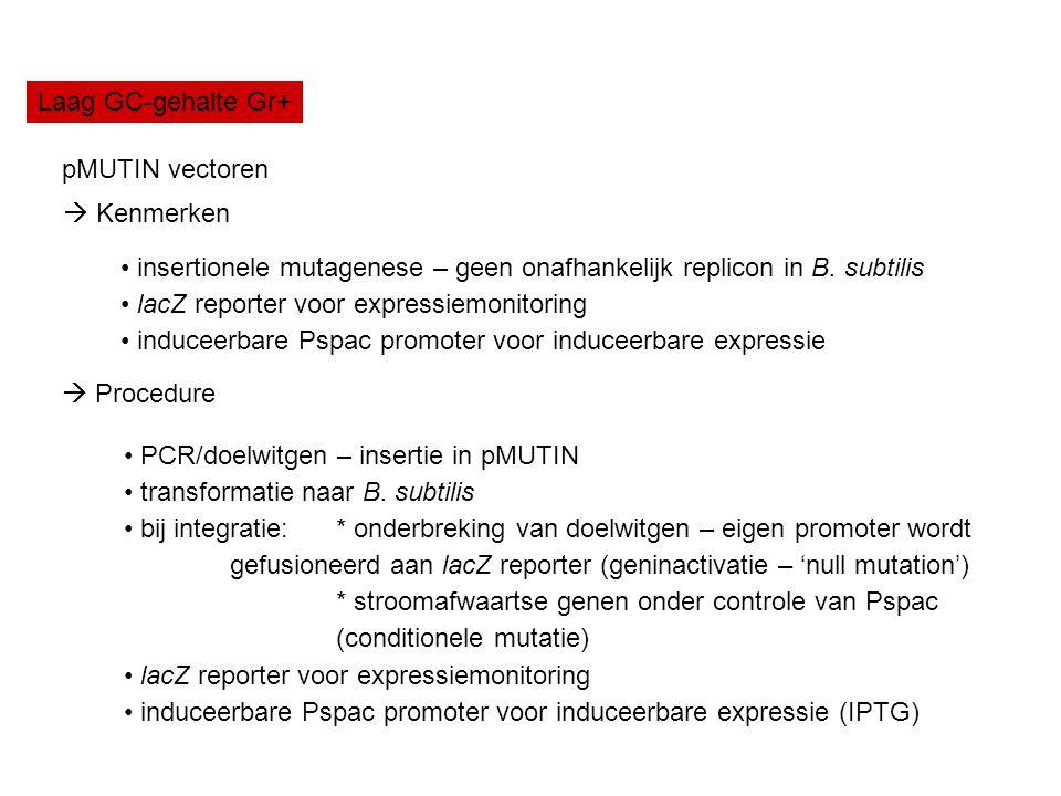 Laag GC-gehalte Gr+ pMUTIN vectoren.  Kenmerken. insertionele mutagenese – geen onafhankelijk replicon in B. subtilis.