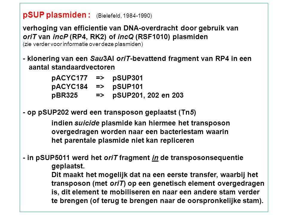 pSUP plasmiden : (Bielefeld, 1984-1990)