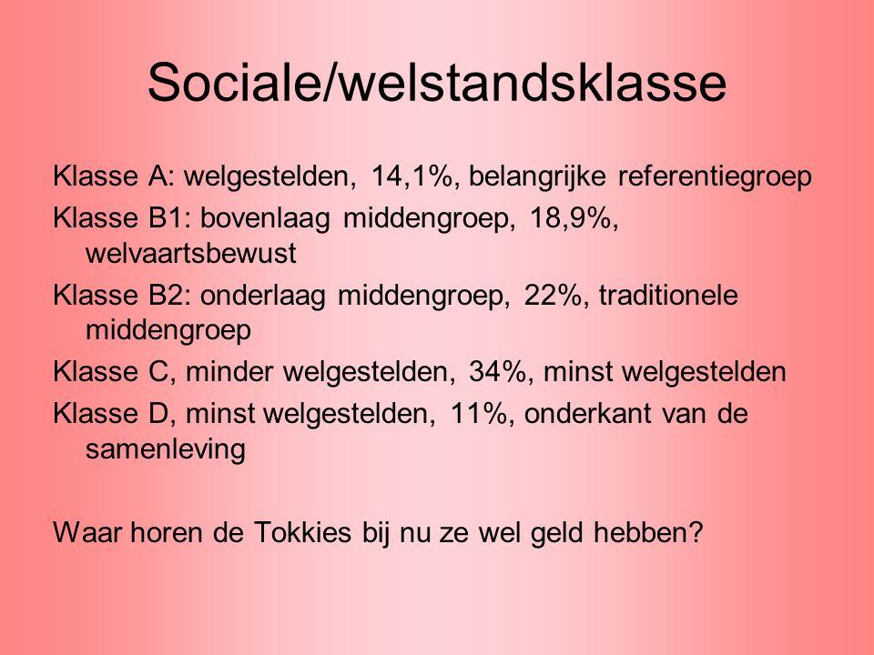 Sociale/welstandsklasse