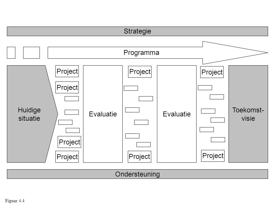 Strategie Programma Huidige situatie Project Evaluatie Project