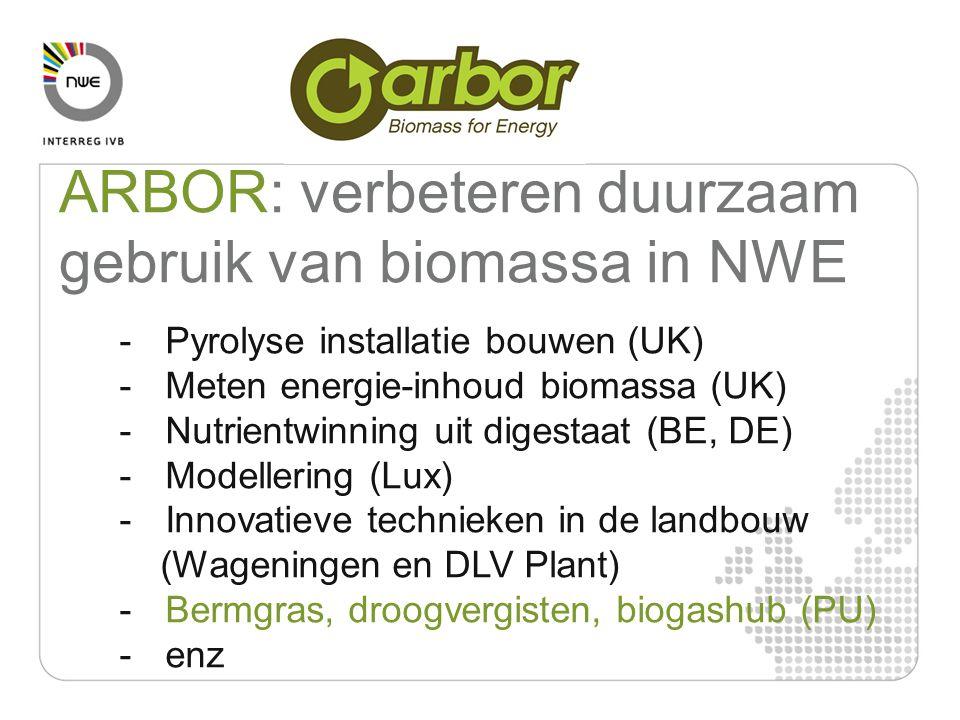 ARBOR: verbeteren duurzaam gebruik van biomassa in NWE