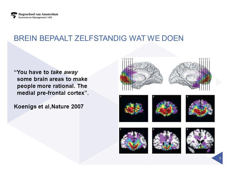 Brein bepaalt zelfstandig wat we doen