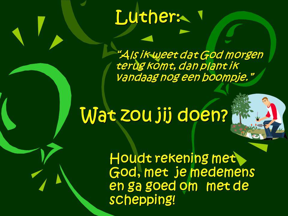 Luther: Als ik weet dat God morgen terug komt, dan plant ik vandaag nog een boompje.