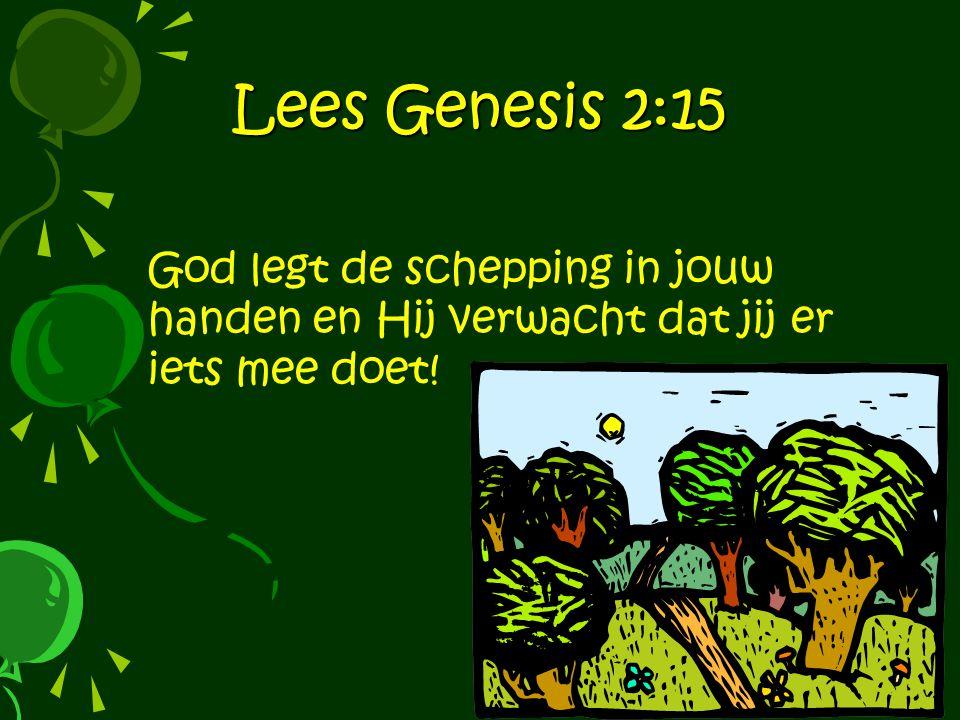 Lees Genesis 2:15 God legt de schepping in jouw handen en Hij verwacht dat jij er iets mee doet!