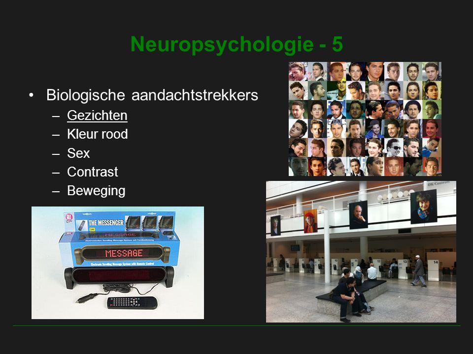 Neuropsychologie - 5 Biologische aandachtstrekkers Gezichten