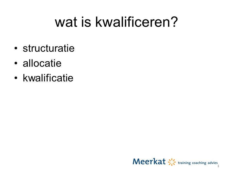 wat is kwalificeren structuratie allocatie kwalificatie