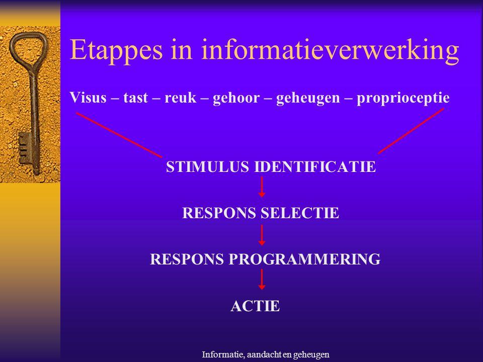 Etappes in informatieverwerking