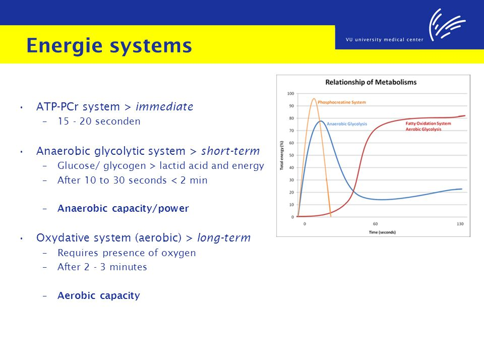 Energie systems ATP-PCr system > immediate