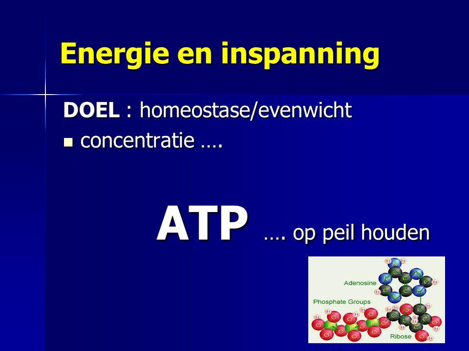 Energie en inspanning DOEL : homeostase/evenwicht concentratie ….