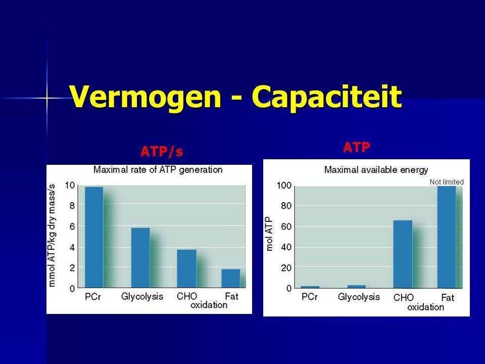 Vermogen - Capaciteit ATP ATP/s