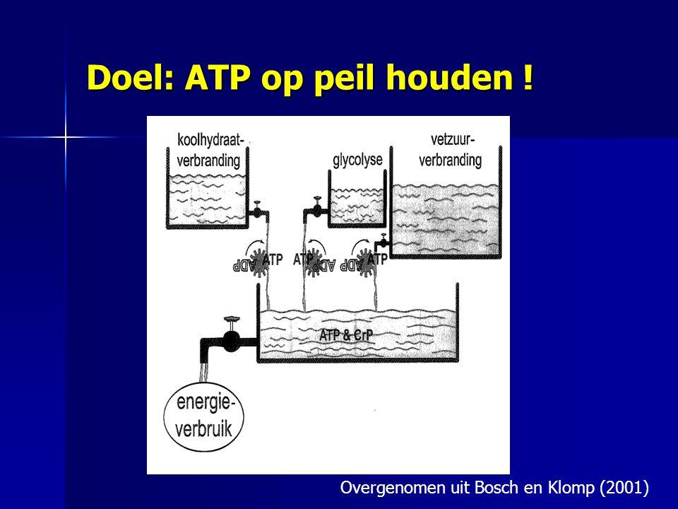 Doel: ATP op peil houden !