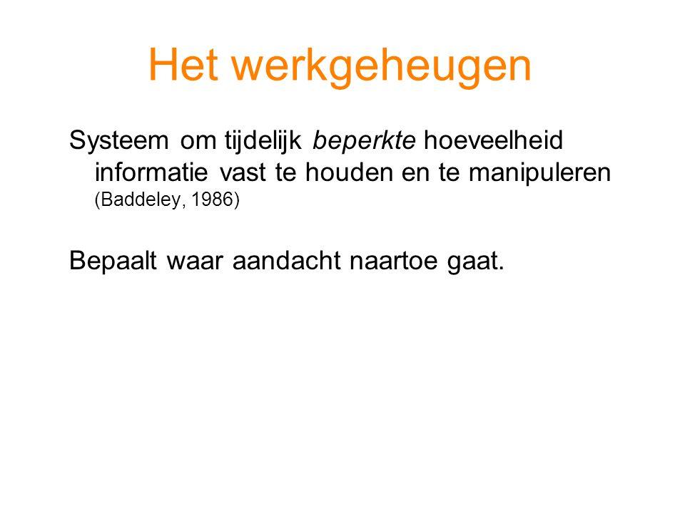 Het werkgeheugen Systeem om tijdelijk beperkte hoeveelheid informatie vast te houden en te manipuleren (Baddeley, 1986)
