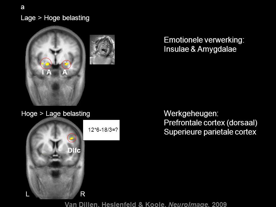 Emotionele verwerking: Insulae & Amygdalae