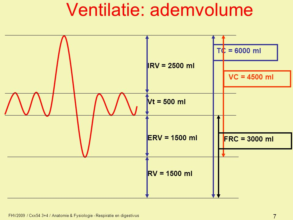 Ventilatie: ademvolume