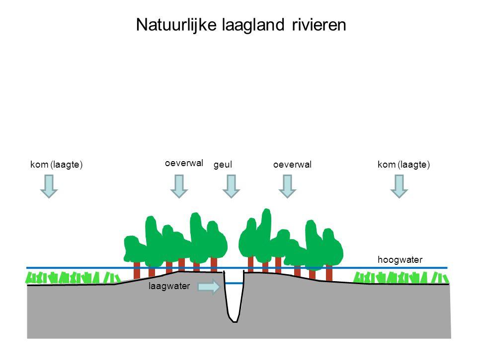 Natuurlijke laagland rivieren