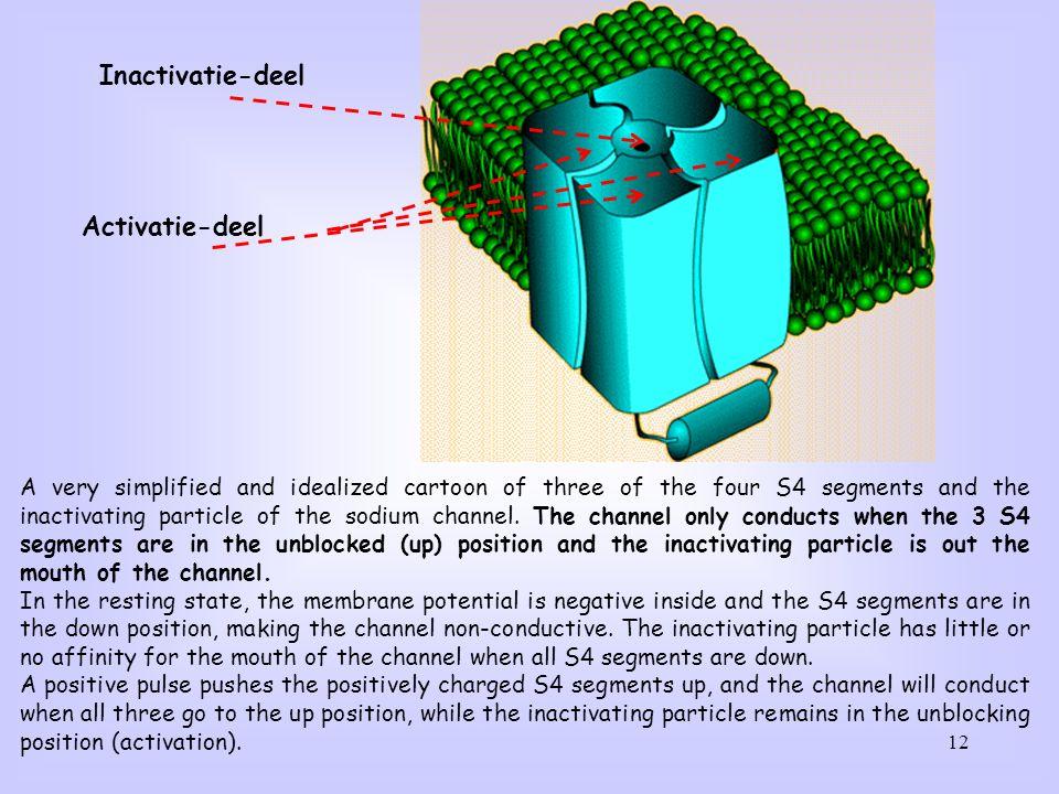 Inactivatie-deel Activatie-deel