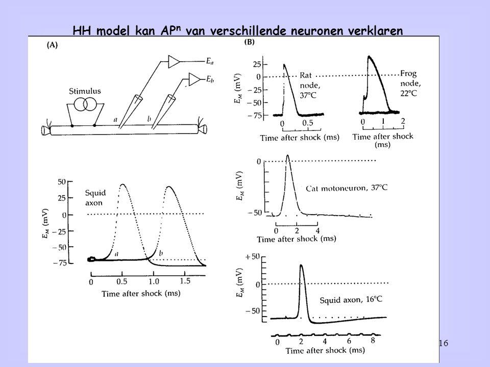 HH model kan APn van verschillende neuronen verklaren