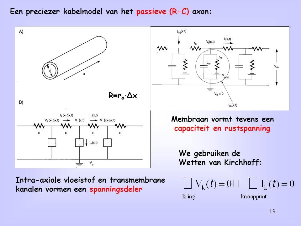 Een preciezer kabelmodel van het passieve (R-C) axon: